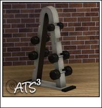 Around the Sims 3