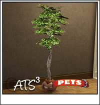 Set Pets                  Scratchingficus